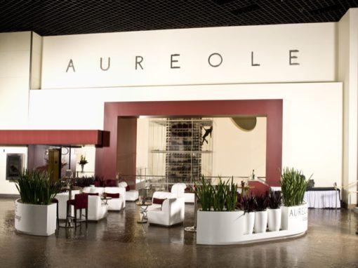Aureole